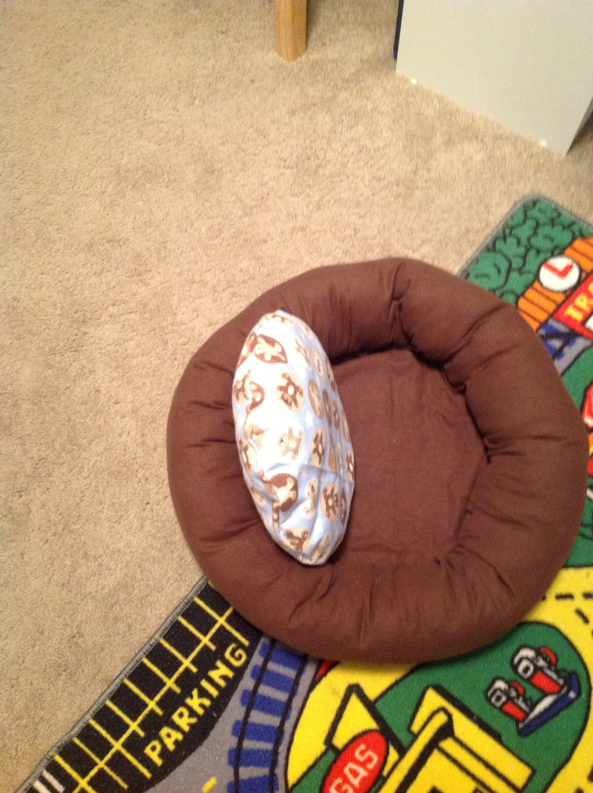 Dog Bed traditional